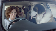 RAC WA + Bad, Worse, Better - J. Walter Thompson Perth